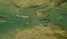 Film Živá rieka + diskusia s tvorcami