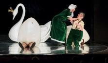 Škaredé kačiatko - hosťovanie Bábkového divadla Žilina