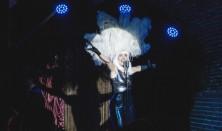 Silvester v Red Cat Cabaret Club