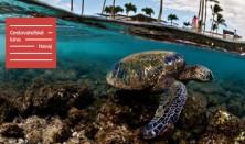 Cestovateľské kino: Havaj