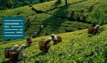 Cestovateľské kino: Srí Lanka
